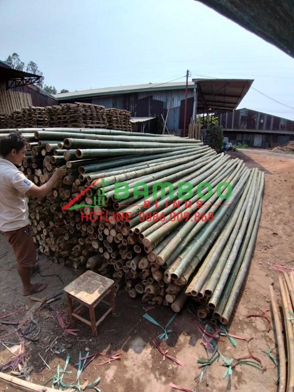 xuong-nguyen-lieu-tre-truc-tai-binh-duong 3