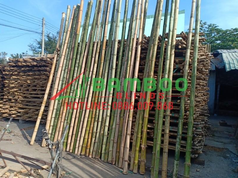 xuong-nguyen-lieu-tre-truc-tai-binh-duong 7